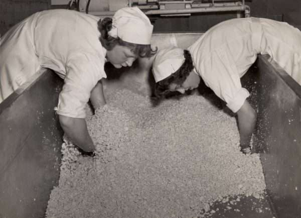 Farmhouse cheese making